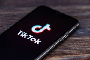 TikTok: Meaning of Bring the Lion Out