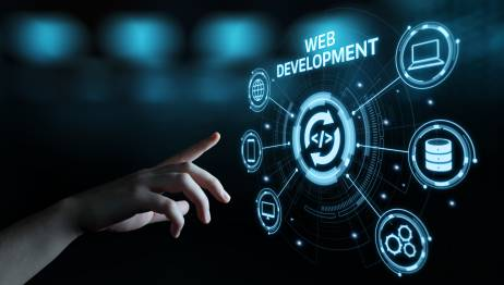 How to Determine Whether Custom Web Development Is Right for Your Business?